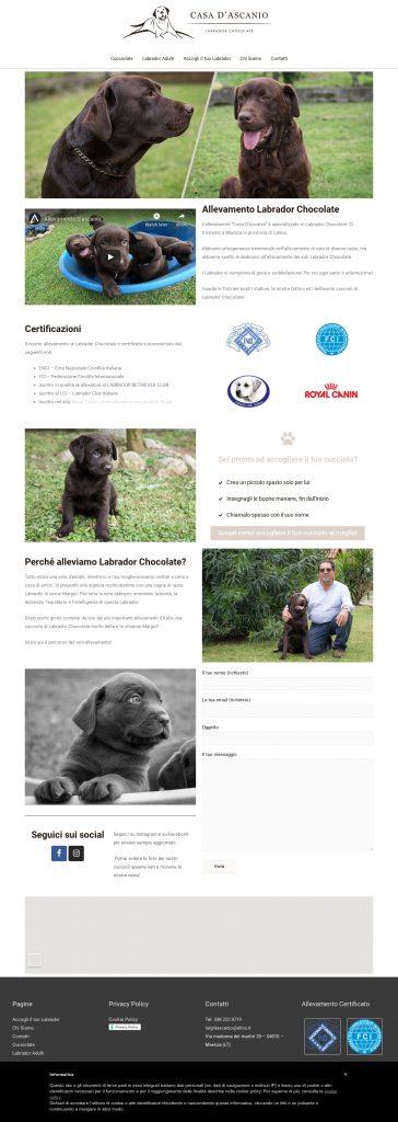 allevamentodascanio sito web realizzato per un allevamento di labrador chocolate